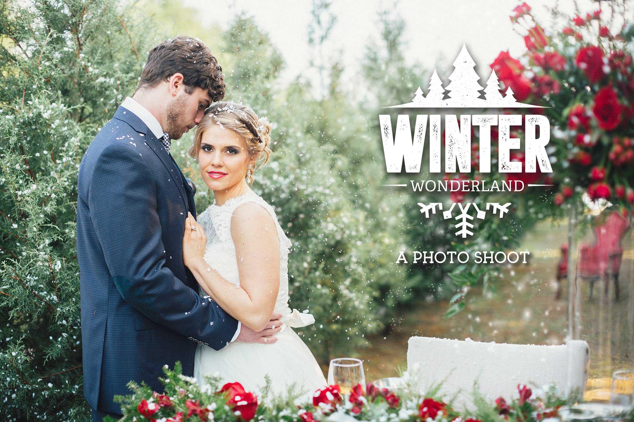 Winter-Wonderland-Photo-Shoot